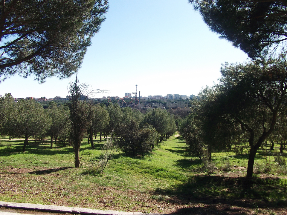 First two days in madrid sol warwick cycling blog - Casas de campo madrid ...