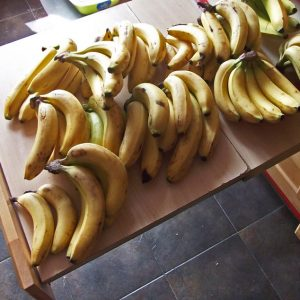 10 kilo of Bananas